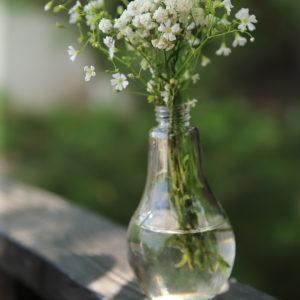 Аренда ваз, аренда вазы лампочки, аренда подвесной вазы